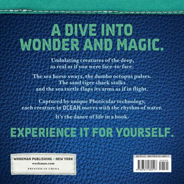 experience the sea book